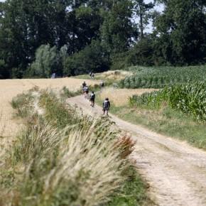 Paris – Roubaix 2015 by Pedalea o Revienta